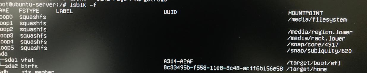 Install Ubuntu 18 04 Server on btrfs - work-work work